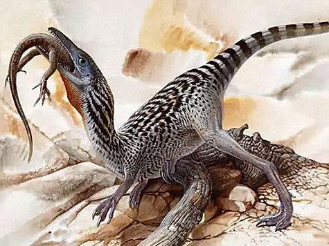 находка палеонтология ученые артефакты забайкалье экспедиция сенсация юрский период приамурье динозавры