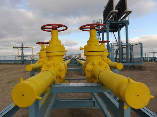 Новости на news.qip.ru / Газпром выбирает в Приамурье район для строительства завода